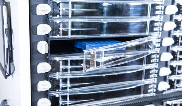 Inovaxe - MSD Hives